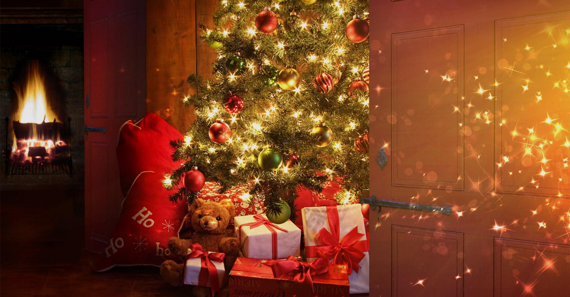 De mooiste Nordmann Excellent kerstbomen in Lisse vanaf € 15,-