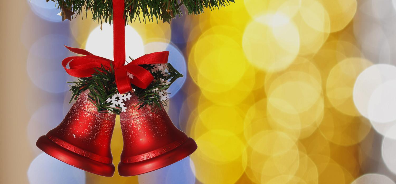 Veelgestelde vragen over Nordmann Excellent kerstbomen in Lisse