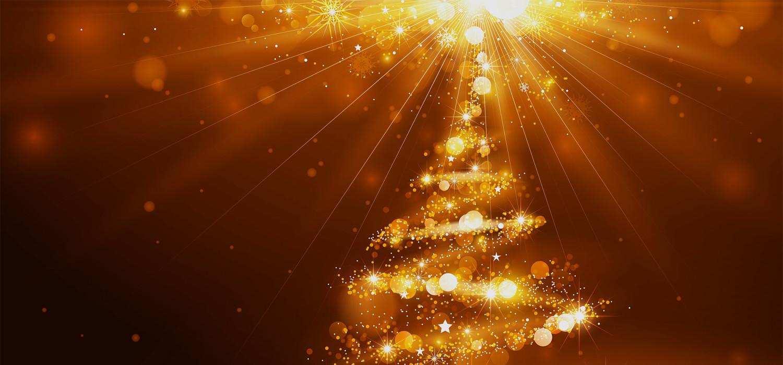 Kerstbomen voor bedrijven in Lisse